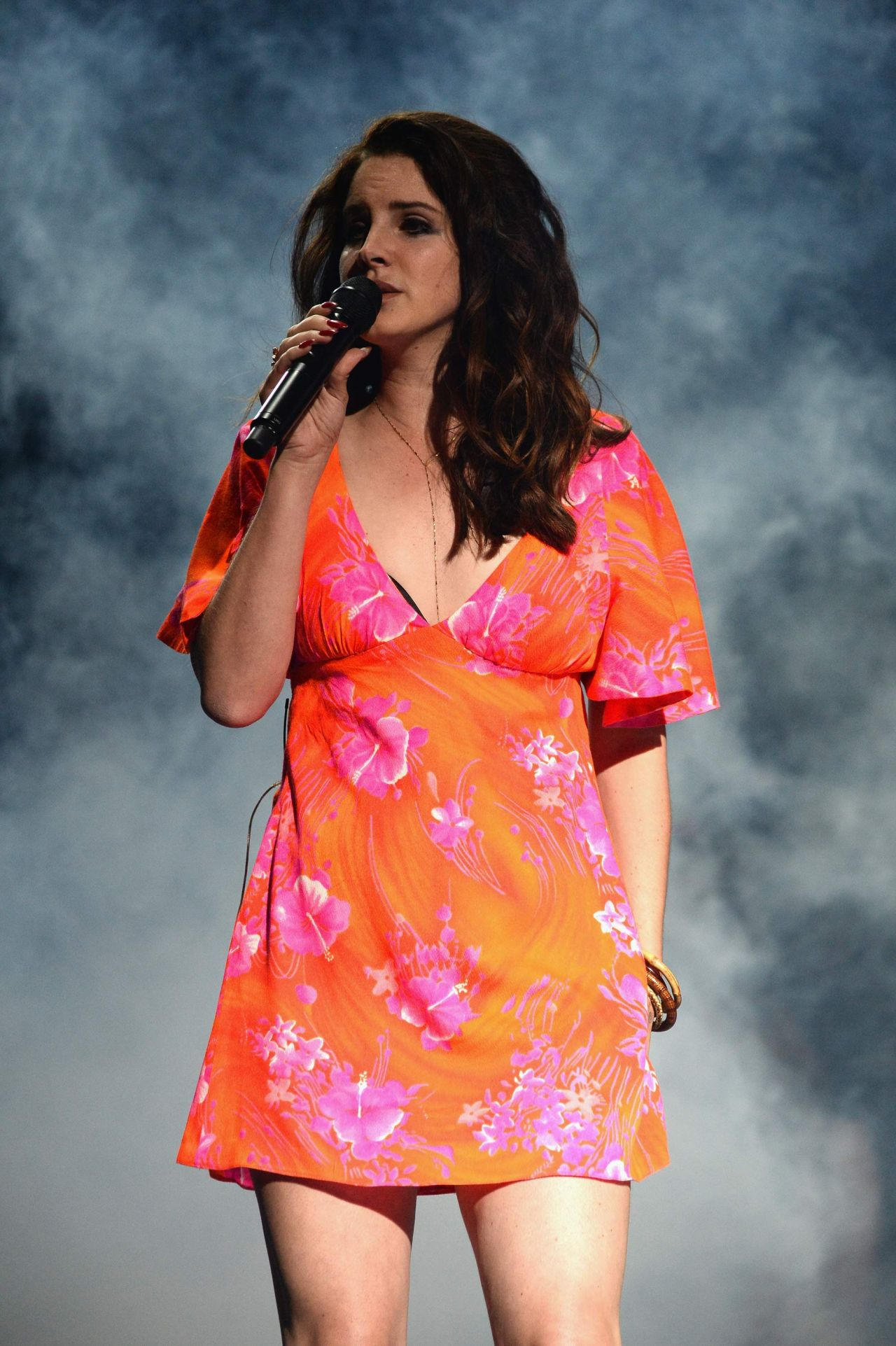 lana-del-rey-performs-at-2014-coachella-music-festival-day-3_1